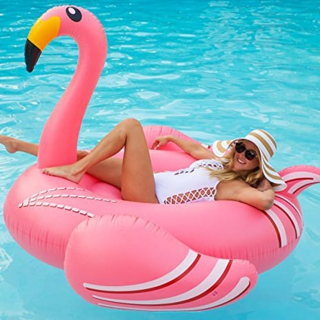 Inflatable Pool Float Looney Flamingo Float Misty